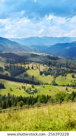 Mountain landscape with pine forest and meadow - stock photo