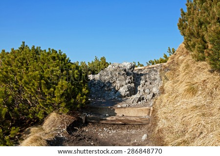 Mountain landscape with rock path and trees in Zakopane - stock photo