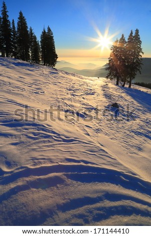 Mountain landscape with snow covered slope and pine trees at sunset