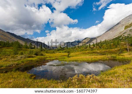 Mountain landscape with swamp, Ural Mountains, Russia.