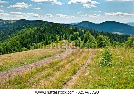 Mountain landscape with trail and green meadow and forest - stock photo