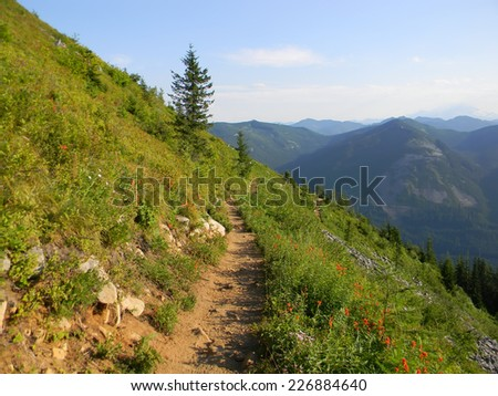Mountain landscape with trail and green meadow and forest, National Park, Washington, USA. - stock photo