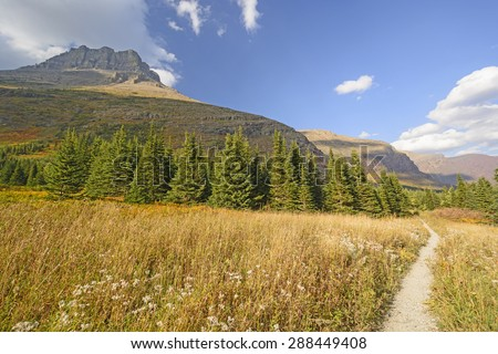 Mountain Meadow on a Sunny Fall Day in the Swiftcurrent Valley of Glacier National Park in Montana - stock photo
