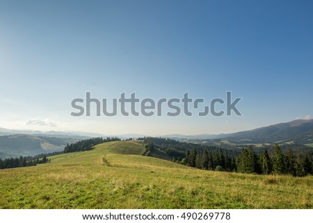 Mountain meadow with green grass, trail, forest and mountains in the background.