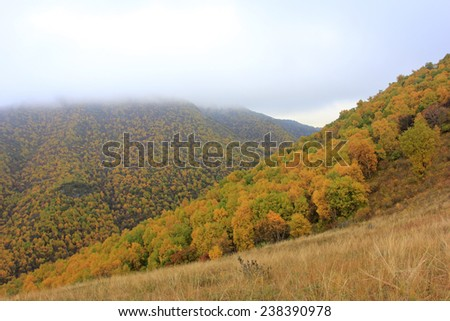 mountain natural scenery, closeup of photo