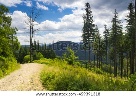 Mountain path from Lysa hora summit in beautiful landscape near forest - Moravian-Silesian Beskydy