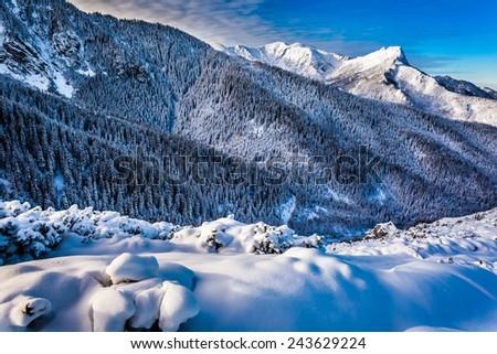 Mountain peak at dawn in winter - stock photo