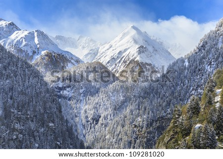 Mountain peaks and forests landscape - stock photo