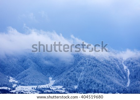 Mountain peaks covered with pine forests and surrounded by clouds - stock photo
