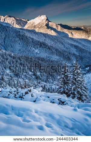 Mountain peaks in the winter dawn - stock photo
