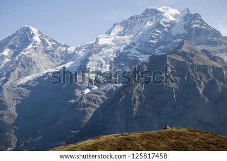 Mountain range and grassy autumnal hill - stock photo