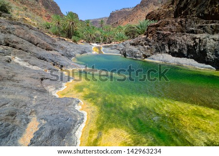 Mountain river amongst rocks on background of the mountains and palms tree, Socotra, Yemen - stock photo