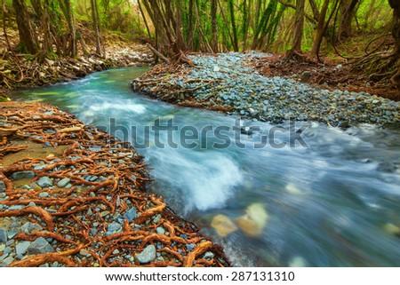 mountain river, cyprus - stock photo