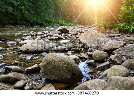 Mountain river flowing through the green forest. Fresh spring the stream of clean water. Ecologically clean zone. Sunset. Dramatic lighting - stock photo