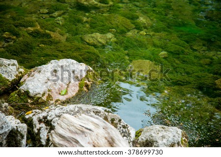 Mountain river flowing through the green forest, green water and rocks covered with moss under water - stock photo