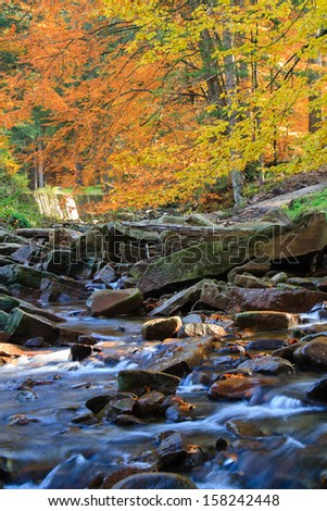 Mountain river. Gravel with colorful beech and maple leaves. Fresh green mossy stones and boulders on river bank after rainy day.