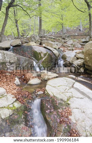 mountain river in autumn in Montseny (catalonia,spain) - stock photo