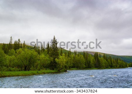 Mountain river in cloudy weather. National park Yugyd-Va, Ural mountains, Russia. - stock photo