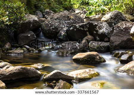 Mountain river in Mauritius national park
