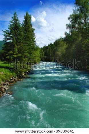 Mountain river Kucherla, forest, Altai, Russia - stock photo