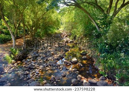 Mountain river or stream at Waimea state park, Oahu, Hawaii - stock photo
