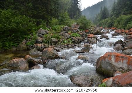 Mountain river, Retezat mountains, Carpathians, Romania  - stock photo