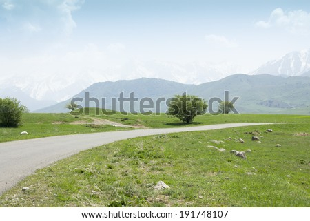 Mountain road from afar
