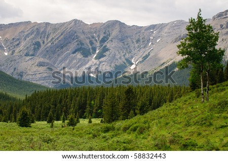 Mountain Scenes from Kanaskis Country Alberta Canada - stock photo