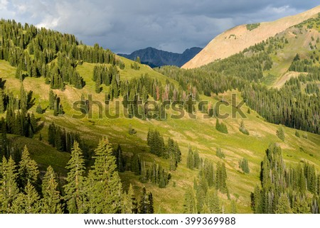 Mountain Slopes - Evening view of evergreen forest on steep mountain slopes, near Crested Butte, Colorado, USA. - stock photo