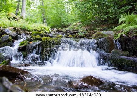 Mountain stream between trees and stones. Water splashing. - stock photo