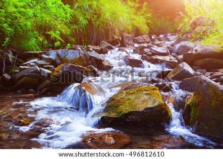 Mountain stream(creek) in the stones and green grass banks in mountain forest. Crystal clear water - rare condition of modern enviroment. Backlight warm sunbeam a light shallow fog. Long exposure.
