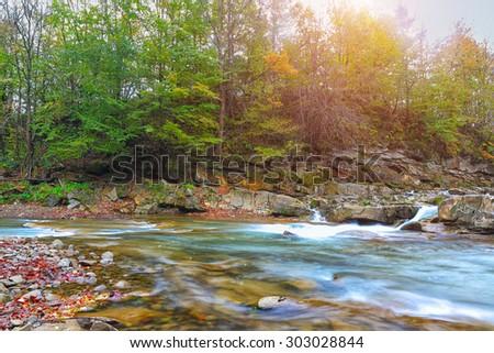 mountain stream in autumn. Fallen leaves - stock photo
