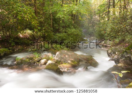 Mountain stream in Great Smoky Mountains national park - stock photo