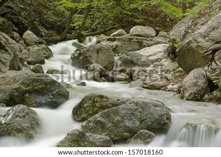 mountain stream in the woods Crimea, Ukraine - stock photo