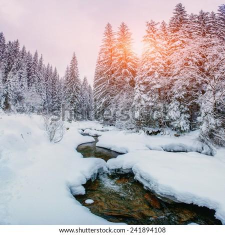 Mountain stream in winter - stock photo