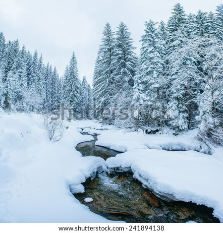 Mountain stream in winter - stock photo