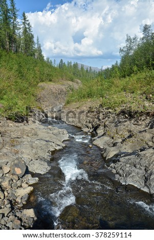 Mountain stream on the Putorana plateau. Summer mountain landscape, fast stream in a stone channel.