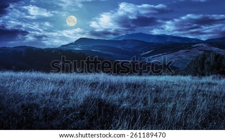 mountain summer landscape. meadow meadow with tall yellow grass and forests on hillside at night in full moon light - stock photo