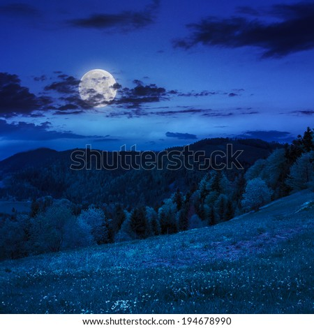 mountain summer landscape. pine trees near meadow and forest on hillside under  sky with clouds at night in moon light - stock photo