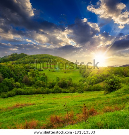 mountain summer landscape. trees near meadow and forest on hillside under evening sky with clouds at sunset