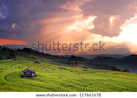 Mountain sunset village cottage rice field green grass beauty sky for design - stock photo