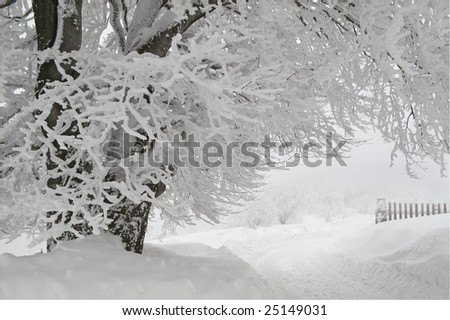 mountain trail, winter in the mountains - stock photo