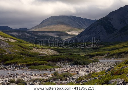 Mountain valley covered with thickets of cedar. Peninsula Kony. Magadan Region. Russia.