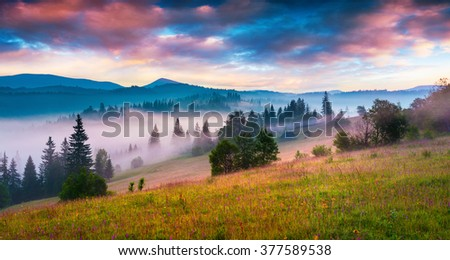 Mountain valley in the morning mist. Colorful summer sunrise in the Carpathians, Gorgany range in the first sunlight. Ukraine, Europe. - stock photo