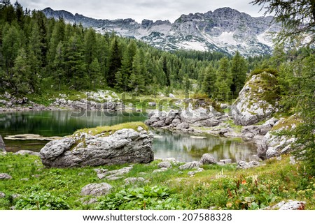 Mountain valley with green trees and lake in Julian alps, Slovenia - stock photo