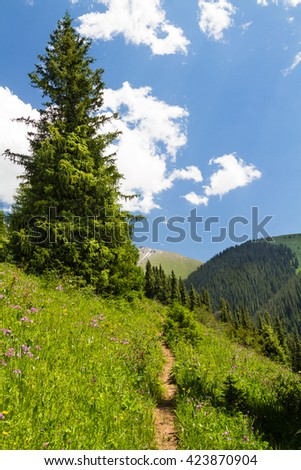 Mountain valley with green trees and river in Tian Shan, Kazakhstan, Central Asia. Hiking trail to Kolsai Lakes - popular tourist destination. - stock photo