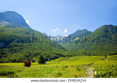 Mountain view from French Alps, near Lake Geneva with vineyard  - stock photo