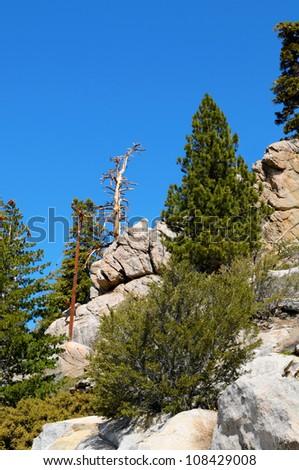 Mountain View in San Jacinto State Park near Palm Springs, California. - stock photo