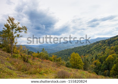 mountain view with sky and grass. Carpathian mountain