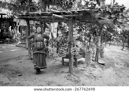 MOUNTAIN VILLAGE, NEPAL - NOVEMBER 21, 2014: Woman selling fresh bananas in the street with beautiful green background